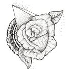 Ancient Rose by makaylasophia