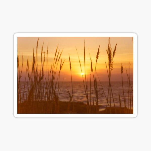 Sunset on Delaware Bay Sticker