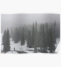 On the Top of Rabbit Ears Pass, Colorado Poster