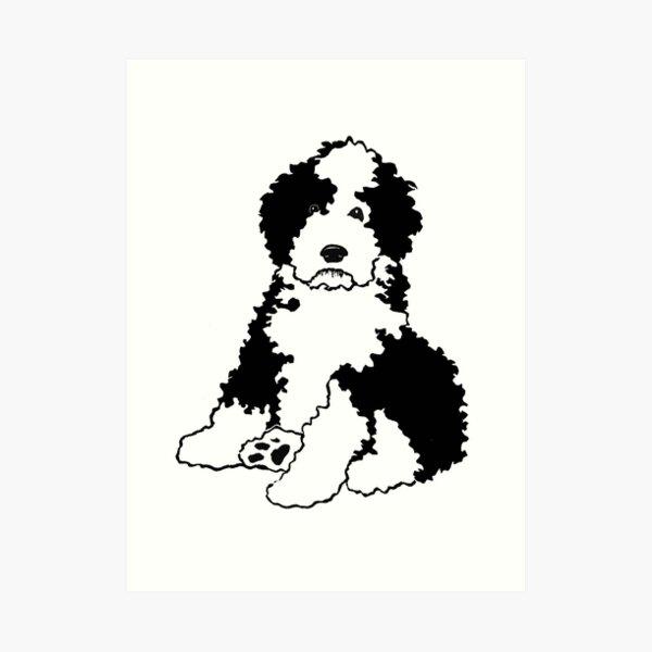 Sheepadoodle Dog Breed Art Print