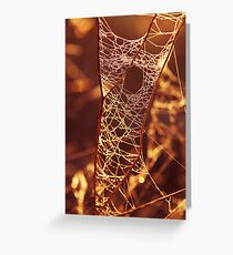 There's a hole in my web....! Greeting Card