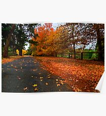 The Glorious Colours of Autumn - Southern Highlands NSW Australia  Poster