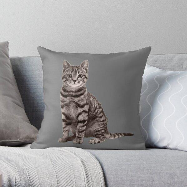 Grey Tabby Cat Throw Pillow