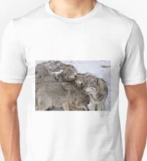 One Big Happy Family Unisex T-Shirt