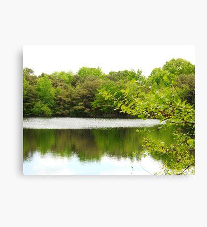 Peaceful Green Canvas Print