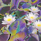 Rainbow Lotus by steppeland