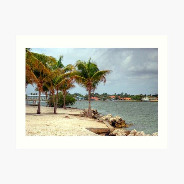 Miami Shores Art Print