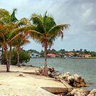 Miami Shores by photorolandi