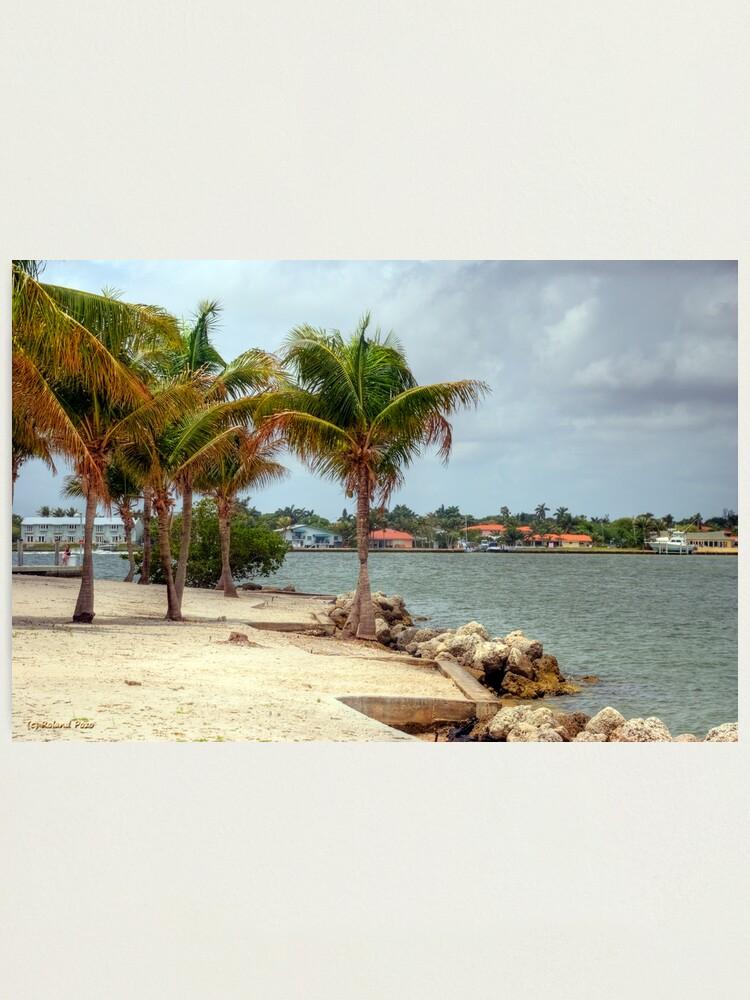 Alternate view of Miami Shores Photographic Print