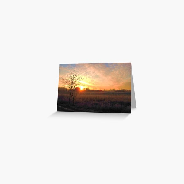 Early Morning Dream Greeting Card