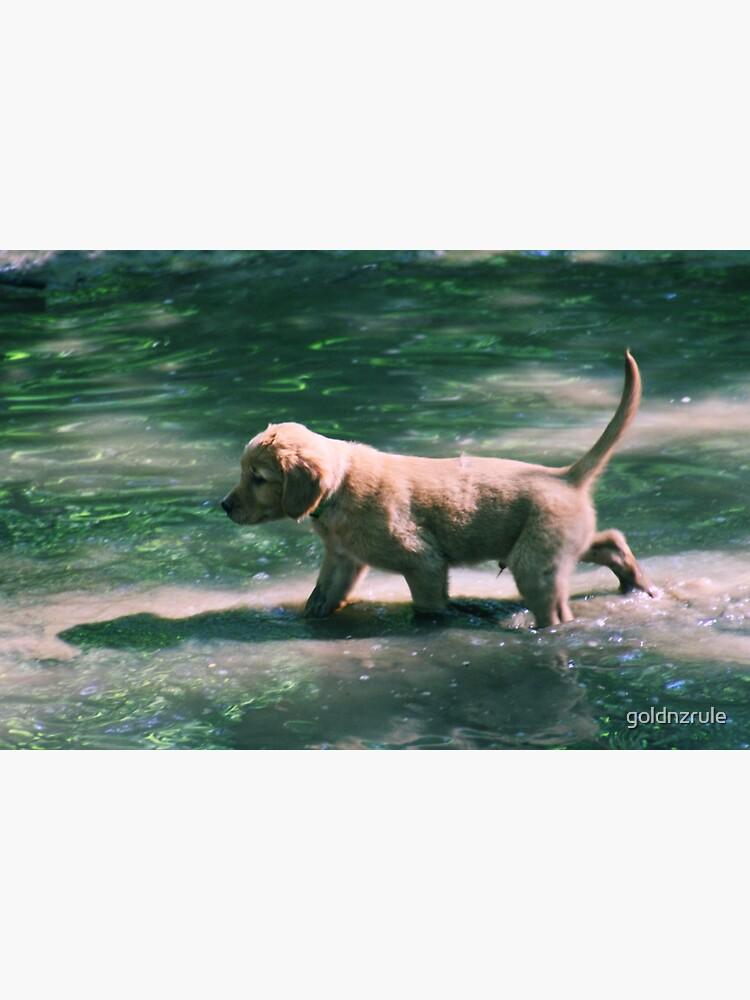 Gimli - Walking on Water von goldnzrule