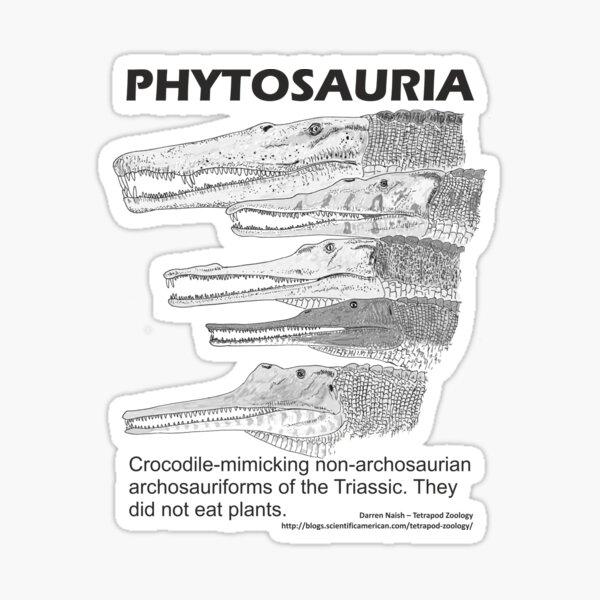 Phytosaurs! Sticker