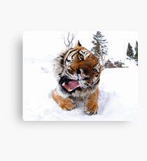 Siberian Tiger Leinwanddruck