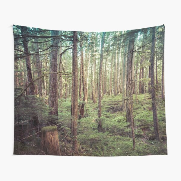 Forest Trees - Tree Woods Green Nature Outdoor Adventure Tapestry