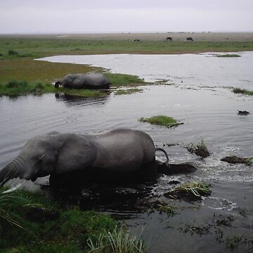 Wading elephants by pixiealice