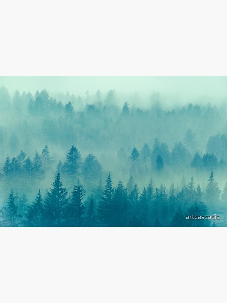 Fog Forest - Blue Green Washington State Woods Foggy Trees  by artcascadia