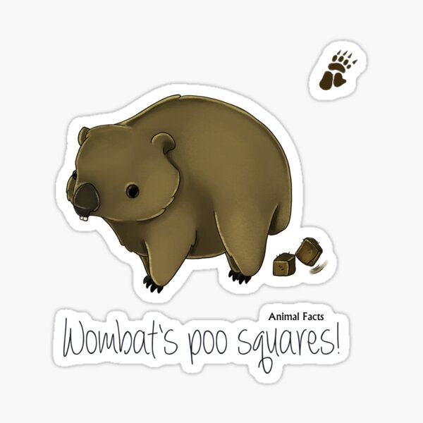 Animal Facts Australia - Wombat Sticker