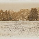 """""""Wide Country Christmas""""... prints and products by Bob Hall©"""