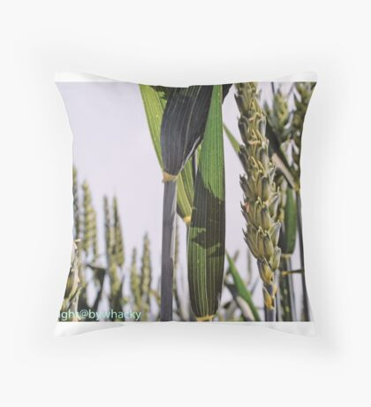 Wheat in the Field  Throw Pillow