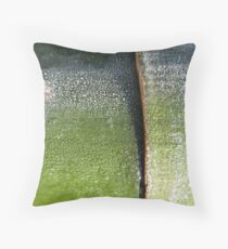 Aurora bamboo Throw Pillow