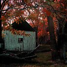 Slab Hut, Autumn at Oakey Creek by Kate Howarth