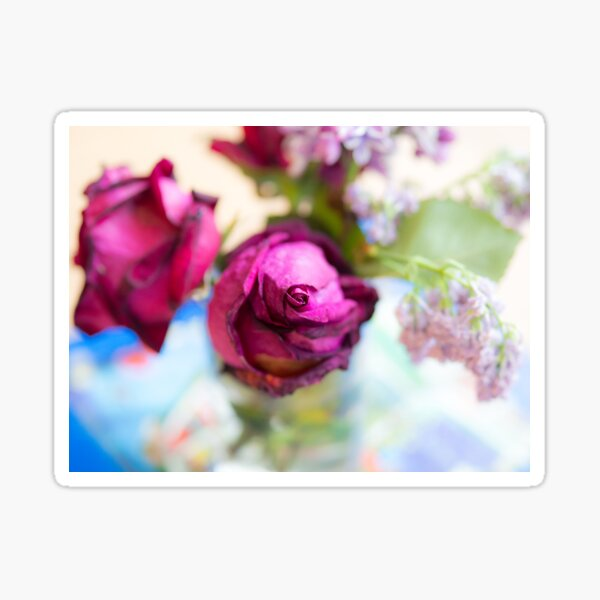 Centre of a Rose Sticker