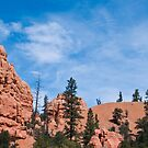 Red Canyon by gail anderson