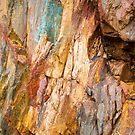 Tasmanian Abstract .5 by Alex Preiss