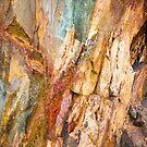 Tasmanian Abstract .4 by Alex Preiss
