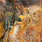 Tasmanian Abstract .2 by Alex Preiss