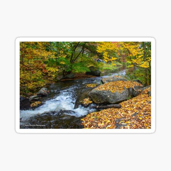Pigeon Creek, Muskoka  Sticker