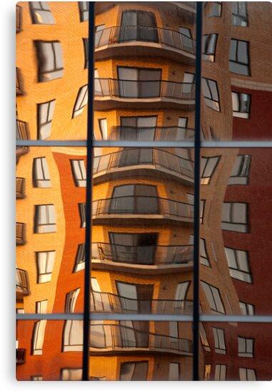 Specular Reflection by Elisabeth van Eyken