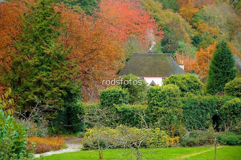 Autumn at Cockington by rodsfotos