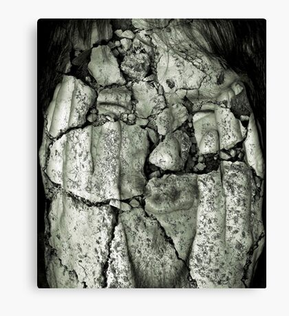 crumbling Canvas Print