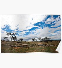 Outback farm Poster