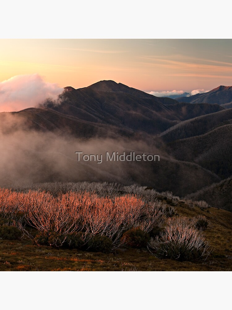 Feathertop hues - Victorian Alps by killywx