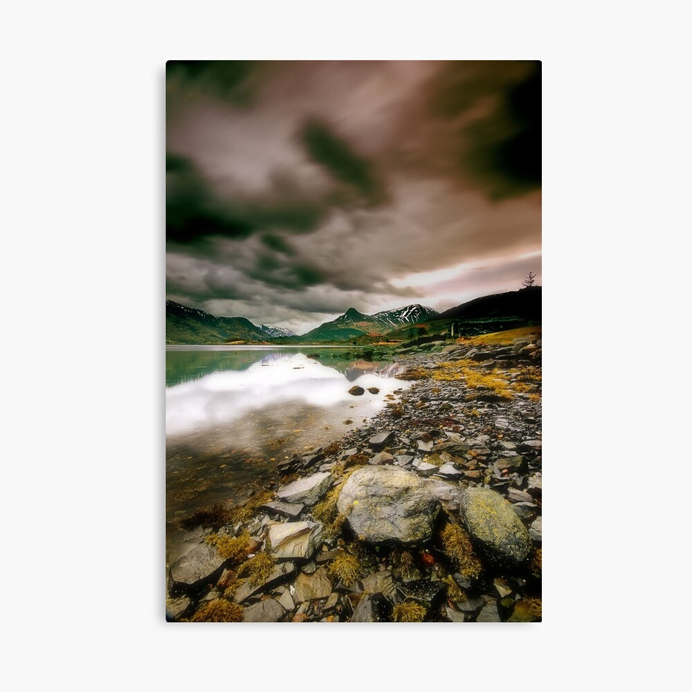 Changeable Canvas Print