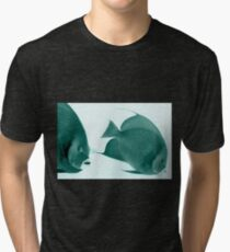 Grey Angelfish - Grand Cayman Tri-blend T-Shirt