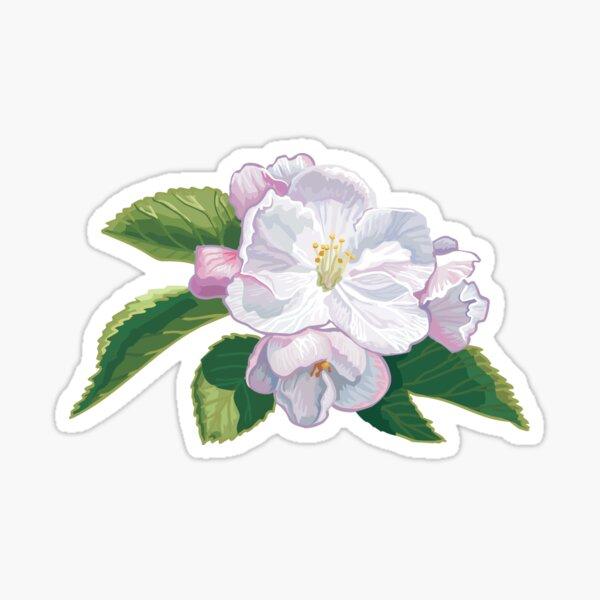 Apple tree blossom Sticker