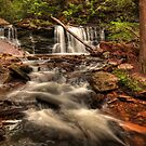 Cayuga Falls by Aaron Campbell