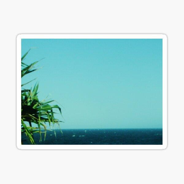 Pandanus,Sea 'n Sky Sticker