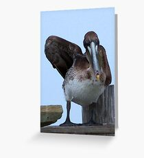 Enough With The Pictures Lady Greeting Card