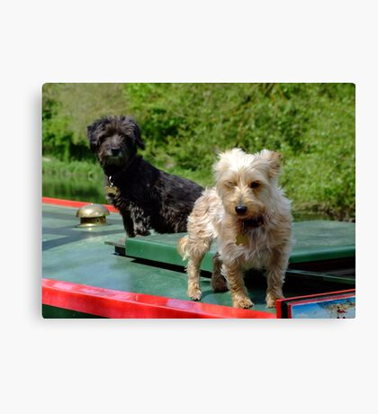Canal canines Canvas Print