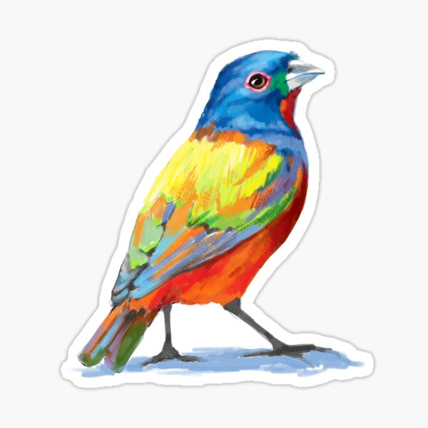 Painted Bunting - Colorful Bird Sticker
