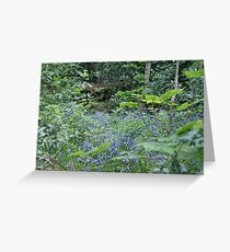 Bluebell Woods, Saltaire, Shipley, W Yorkshire, UK Greeting Card