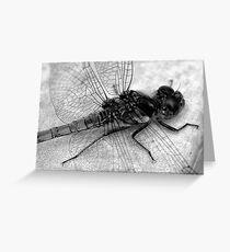 Ordonata Greeting Card
