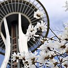 Spring at the Needle by Jerome Petteys