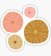 Seeigel in Gold + Koralle Sticker