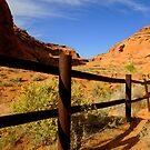 Desert Fence by R. Mike Jacobson
