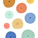 Colorful Sea Urchins by latheandquill